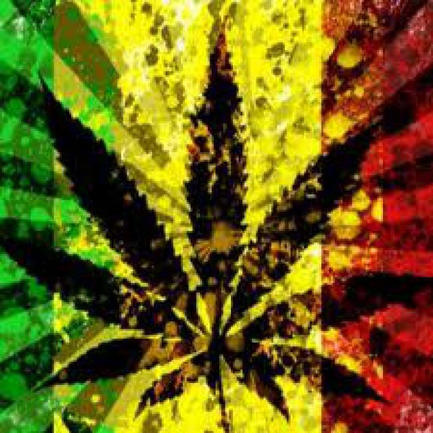 rastafarianism use of ganja as a Religions always reflect the social and geographical environment out of which they emerge like rastafarianism for example, the use of marijuana as a sacrament and aid to meditation is logical in jamaica where a particular plant ganja grows freely.