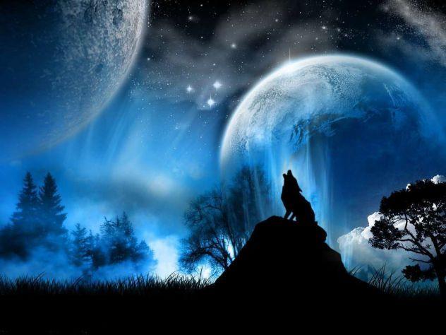 Alone Wolf - Victoria Diopsid | Volk 3