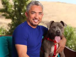 Cesar Millan and Junior =)