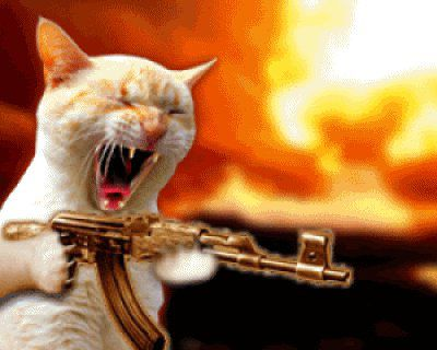 atake!!!noow