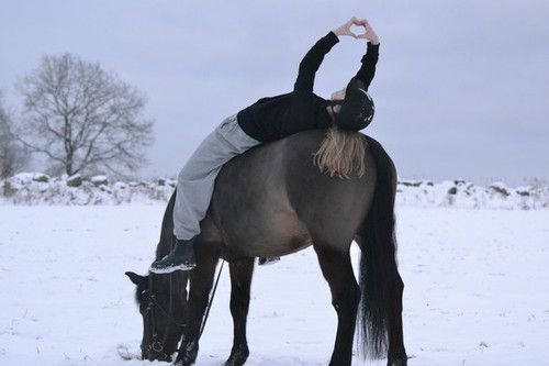 gimnastika na konju