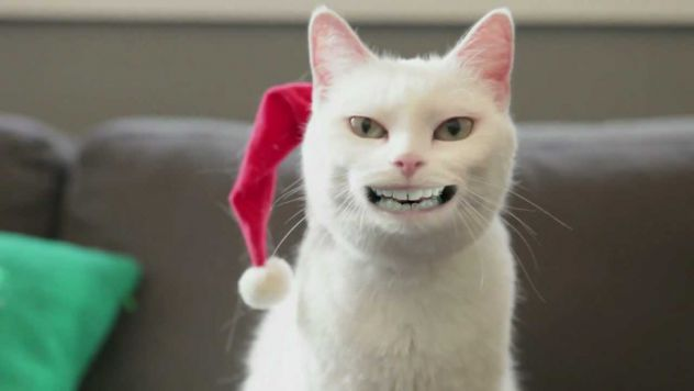 za božič sem si umil zobe