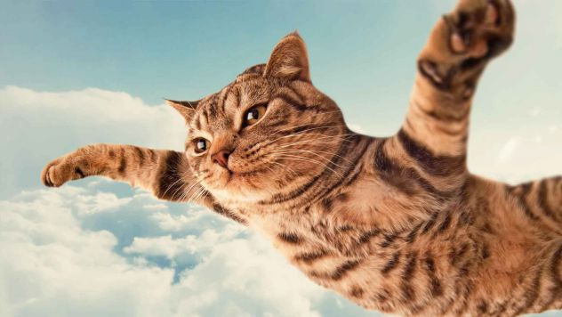I BELIVE I CAN FLY.. i BELIVE I CAN TUCH THE SKY!!!!