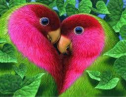 Živalsko srce