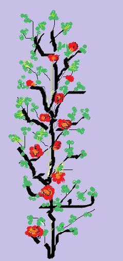 Rože rože