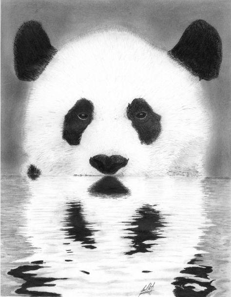 Vodna Panda