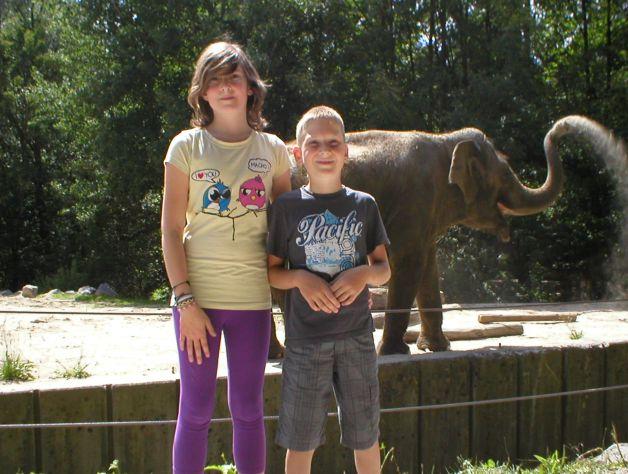 Živalski vrt...