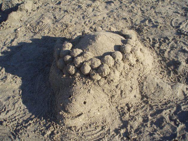 moj izdelk iz miuke... želvicaa!