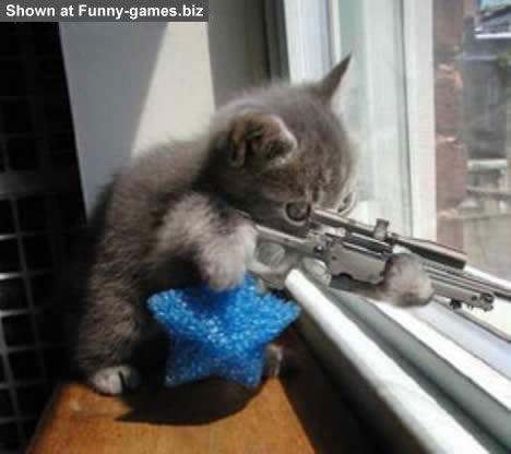 mačje streljanje