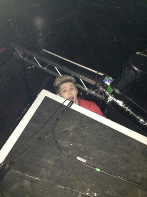 hello, i'm Niall