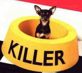I'm killer