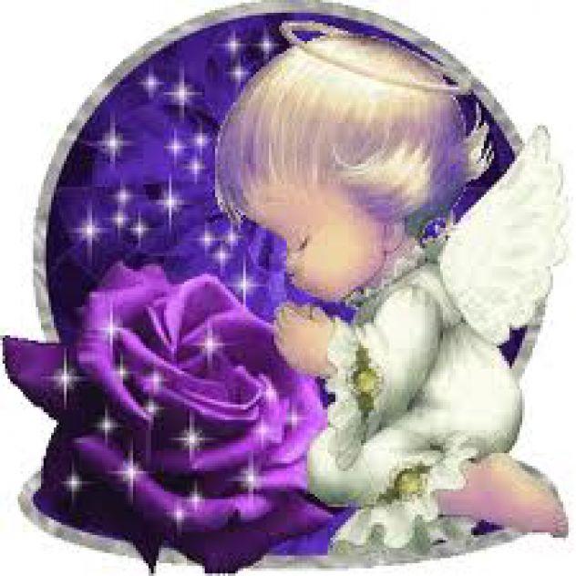 angelske rože