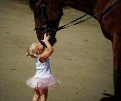 Otroci imajo radi konje!  :D
