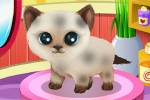 mobilne igre Paws to Beauty 3: Puppies and Kittens Edition