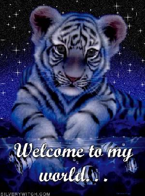 *mali tigerček*