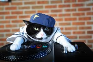DJ svitan