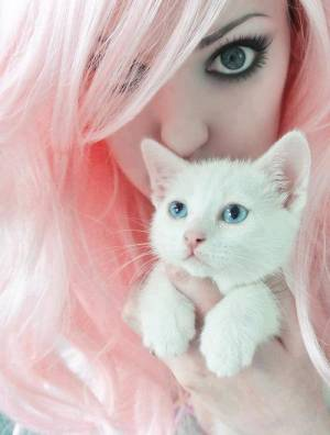 Kitty girl :3