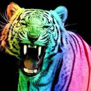 Muca-tiger Igre