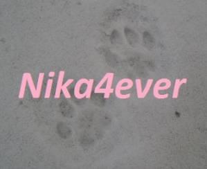 Nika4ever