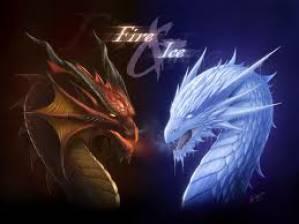 pro dragon!!!