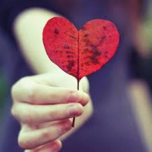 rose ;)